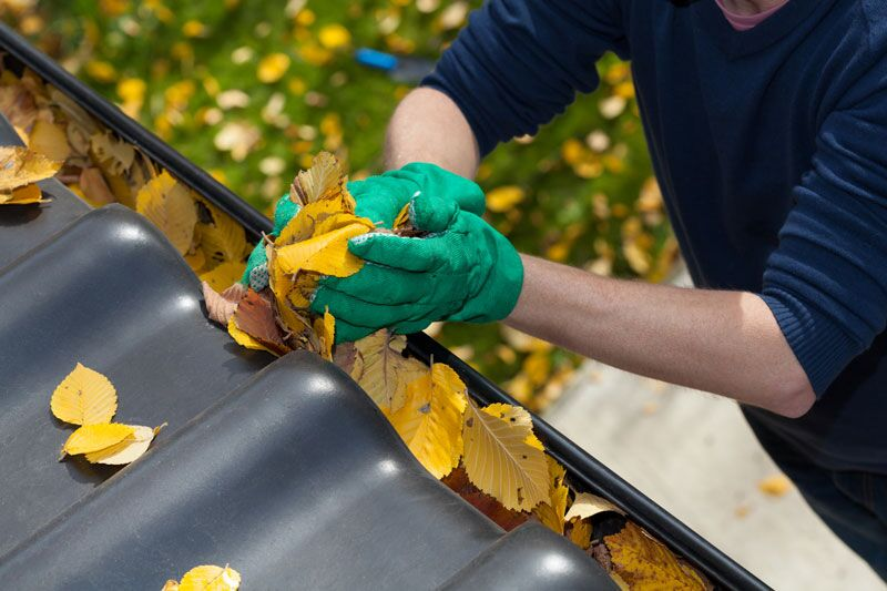 How to Clean Your Gutters for Fall