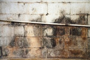 Don't Let Household Appliances Cause Water Damage